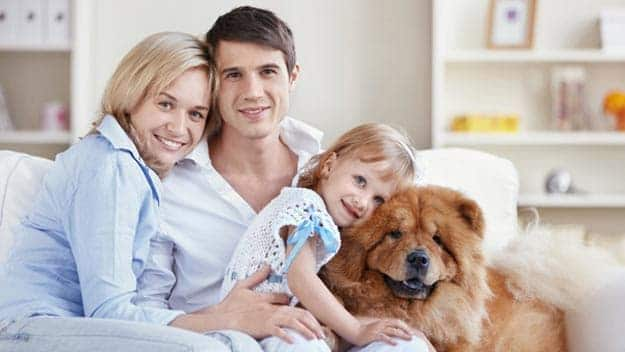 Wills & Trusts dog-young-family Direct Wills Whitehall